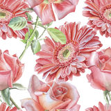 Gerbera and rose. Seamless pattern. Royalty Free Stock Images