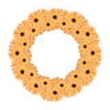Gerbera Round Frame Stock Images