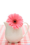 Gerbera in sauceboat Royalty Free Stock Photo