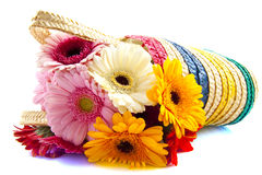 Gerbera shopping Stock Photography