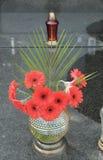 Gerberabloemen op het graf Royalty-vrije Stock Afbeelding