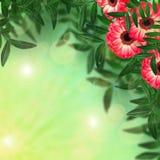 Gerberablumen und -blätter auf unscharfem Hintergrund stockbild
