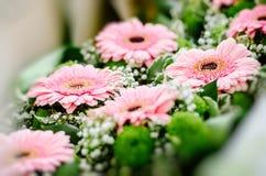 Gerberablumen vorbereitet für Heiratsgäste Lizenzfreies Stockfoto