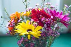 Gerberas dans un vase Photo stock