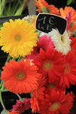 Gerberas at a flower market Royalty Free Stock Image