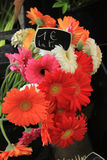 Gerberas at a flower market Stock Image