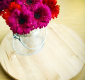 Gerberas in glass vase Royalty Free Stock Images