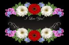 Gerberas, purpurrotes Singrün und rosa Flammenblumen mit auf schwarzem Hintergrund ich liebe dich grüßen Stockfotografie