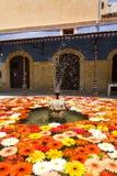 Gerberas som svävar i en vattenspringbrunn Royaltyfri Foto