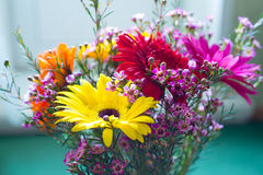 Gerberas in a vase Stock Photo