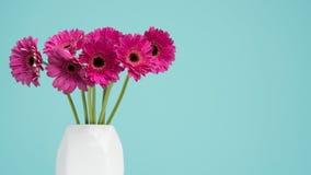 Gerbere rosa scure in un vaso su una retro tavola Giorno del ` s di giorno, del biglietto di S. Valentino della madre del ` s del Fotografia Stock