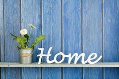 Gerberinstallatie met witte bloemen thuis Royalty-vrije Stock Foto's