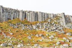 Gerduberg falezy na Iceland Zdjęcie Royalty Free