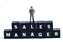 Gerente de vendas Fotografia de Stock