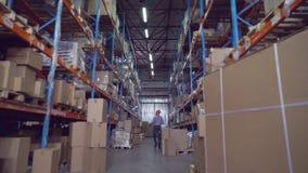 Gerente no trabalho no armazém que verifica o estoque vídeos de arquivo