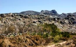 geres nacional parque peneda Zdjęcie Royalty Free