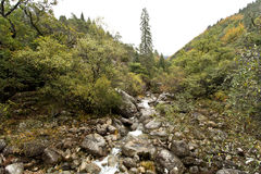 Geres National Park. Rio Maceira valley at Geres National Park, in northern Portugal stock photos