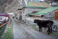 Gergeti village Stock Photos