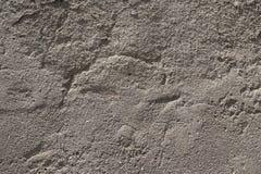 Geribbelde convexe cementmuur van grijze kleur stock foto's