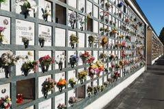 Gerichte grafstenen in een begraafplaats met roze tulpen voor de grafstenen Royalty-vrije Stock Afbeelding