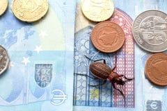 Geriebener K?fer auf der Rechnung zwanzig Euros, kleine M?nzen von Europa stockfotos