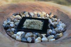 Geriebener Salbei in einem kleinen Teller Lizenzfreies Stockfoto