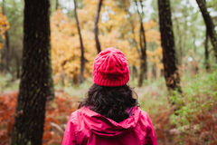 Gerijpte vrouw die in het bos wandelen royalty-vrije stock fotografie