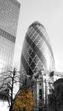 Gerkin,伦敦 免版税图库摄影