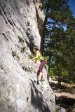 Gerl op de rots Stock Afbeelding