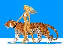 gerl tygrys Fotografia Royalty Free