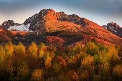 Gerlach morgon Fotografering för Bildbyråer