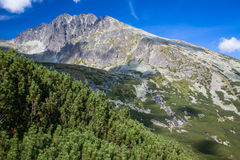 Gerlach peak in High Tatras, Slovakia Royalty Free Stock Photo