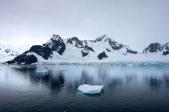Gerlache kanal, Antarktis Royaltyfri Bild
