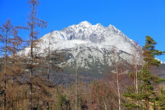 Gerlachovsky stit - peak in High Tatras, Slovakia Stock Image