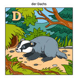 German alphabet, letter D (badger and background) Stock Photos