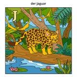 German alphabet, letter J (jaguar and background). German alphabet, vector illustration (letter J). Color image (jaguar and background Stock Illustration