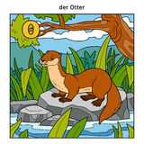 German alphabet, letter O (otter and background) Stock Image
