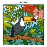 German alphabet, letter T (toucan and background) Stock Photography