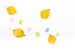 German autumn. Autumn leaves decoration in german letters Stock Photo