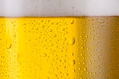 Cold beer background. A german beer with drops of dew an froth. ideal for websites and magazines layouts Stock Photos