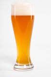 German beer isolated Stock Images