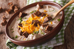 German beer soup with cheese and croutons in a bowl close-up. ho Royalty Free Stock Photo