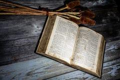 German bible Royalty Free Stock Image