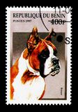 German Boxer (Canis lupus familiaris), Dogs serie, circa 1997. MOSCOW, RUSSIA - NOVEMBER 26, 2017: A stamp printed in Benin shows German Boxer ( royalty free stock photo