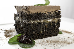 German chocolate cake. Slice of German Chocolate cake with cocoa sprinkled on it Royalty Free Stock Image
