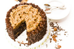 German chocolate cake Stock Image