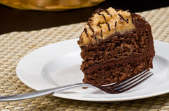 German Chocolate Fudge Cake Royalty Free Stock Image