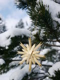 German christmas tree with homemade ornaments rr Royalty Free Stock Photo