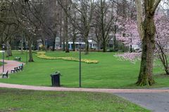 German city park in the early spring royalty free stock photo