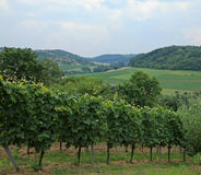 German Countryside Royalty Free Stock Image